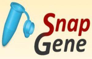 SnapGene torrent